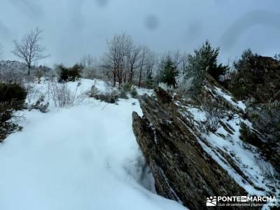 Hayedo de Montejo - Cuerda de la Pinilla; mapas para senderismo; pasos largos senderismo